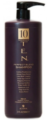 TEN Perfect Blend Shampoo MAXI