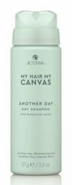 My Hair My Canvas Another Day Dry Shampoo MINI